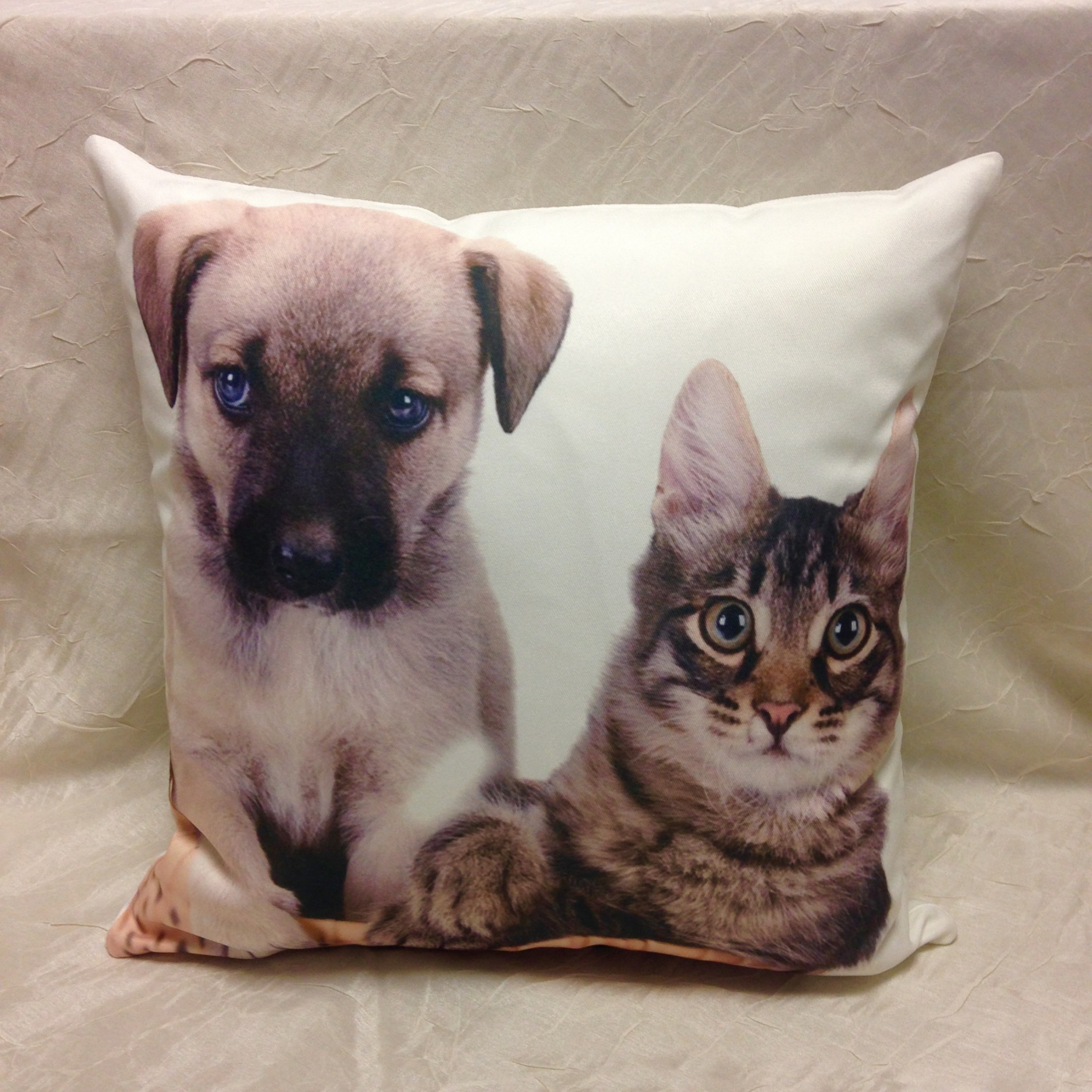 housse de coussin chien et chat 40 x 40 cm l 39 atelier de la toile. Black Bedroom Furniture Sets. Home Design Ideas